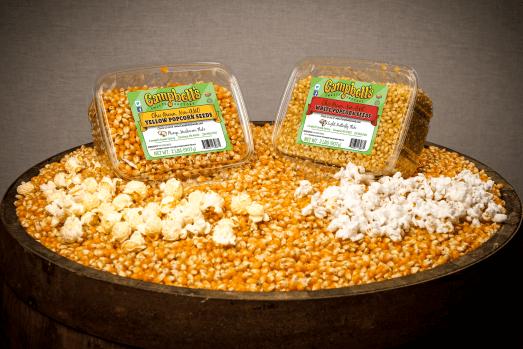 Popcorn_Seed_Display-UP-523x349